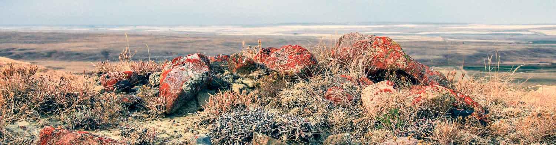 Hiking in Grasslands National Park