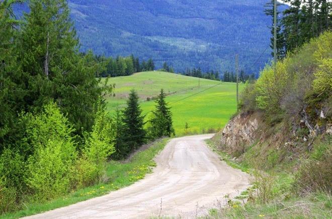 """Roads winding through dandelion fields and cow farm"""