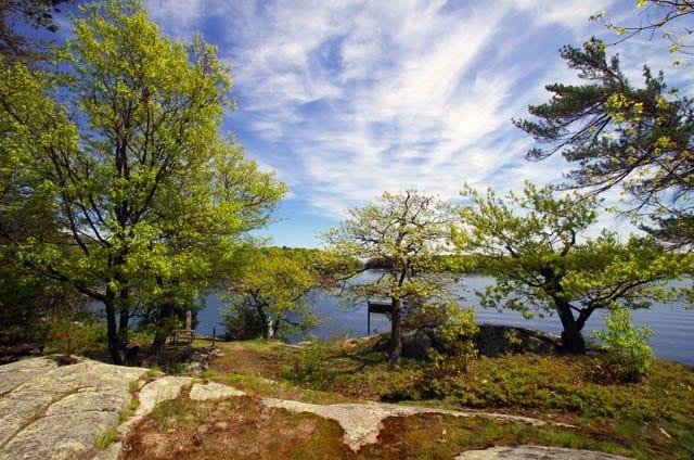 """Pretty campsite on Beau Rivage Island"""