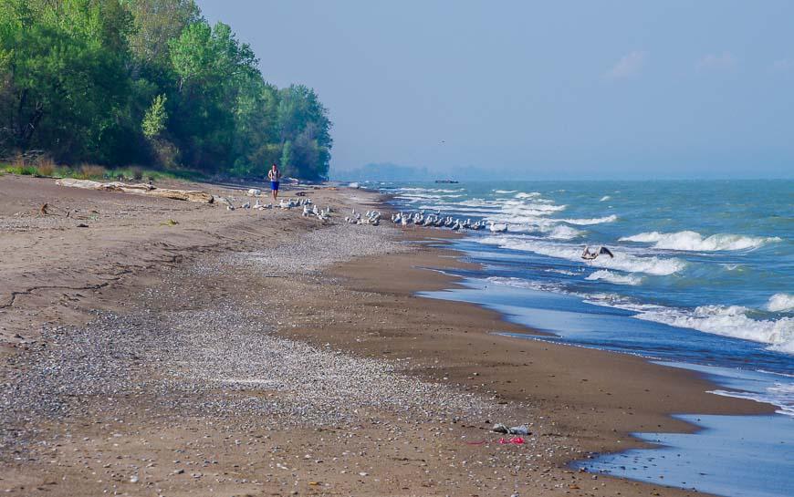 Quiet stretch of beach