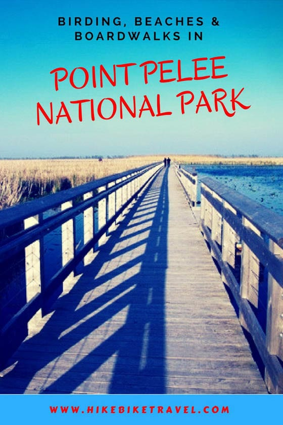 A Spring Trip to Point Pelee National Park
