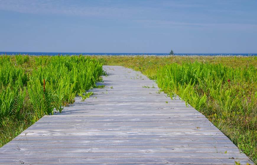 Nice stretches of boardwalk in Kejimkujik National Park Seaside