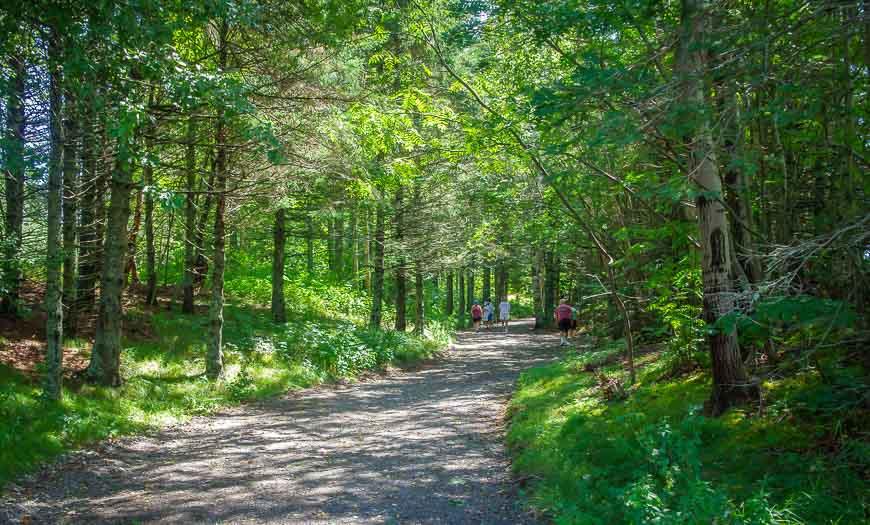 Lovely hiking trails in Roosevelt Campobello International Park