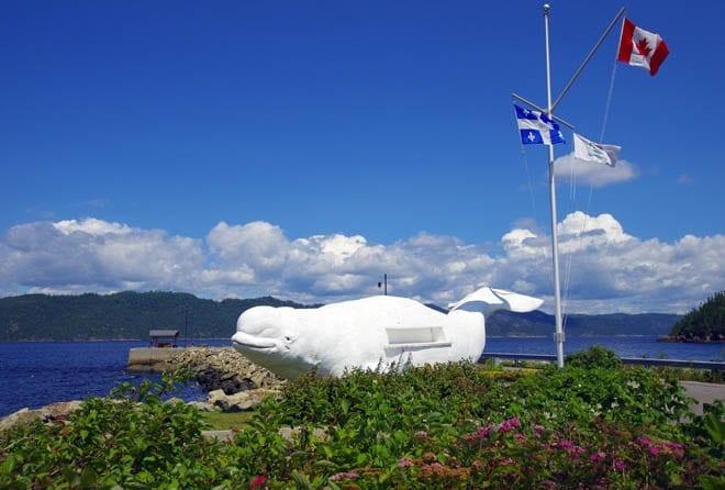 """A beluga hale greets visitors at the wharf in Petit Saguenay"""
