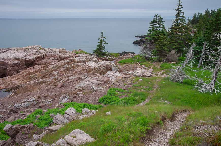Really lovely cliff-top walking
