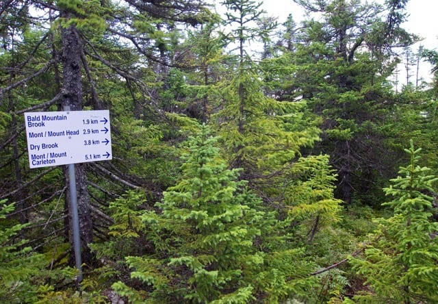 """""""Sign pointing the way to Mount Carleton just below the summit of Mount Sagamook"""""""