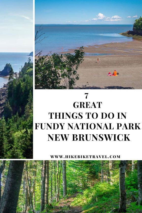 7 great things to do in Fundy National Park, New Brunswick