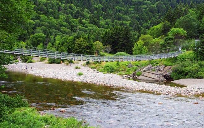 """""""Suspension bridge over the Big Salmon River"""""""