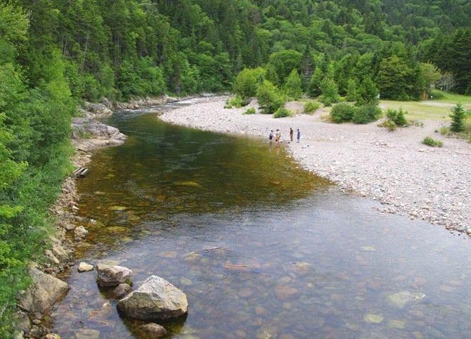 """The Big Salmon River"""