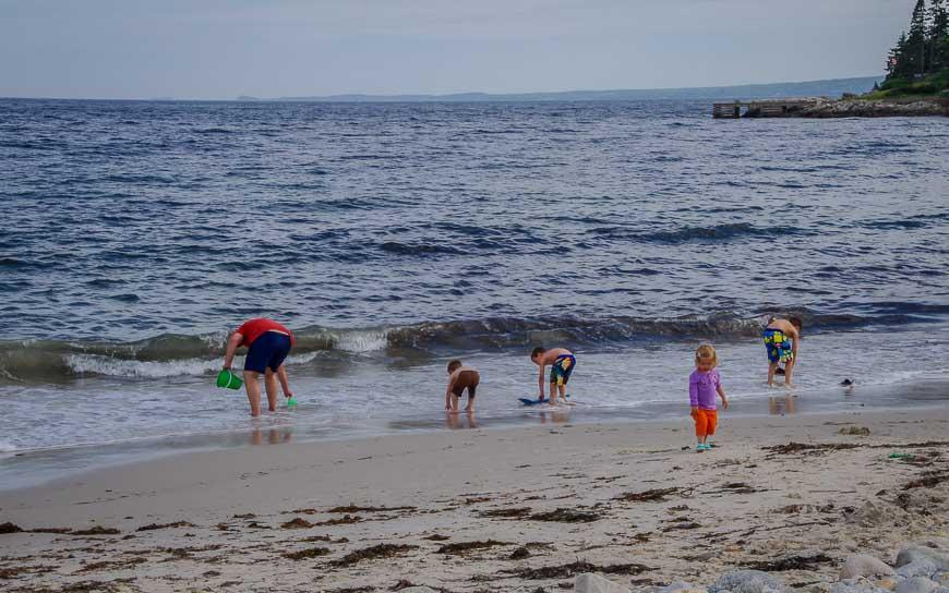 A family at a small beach near Hubbards