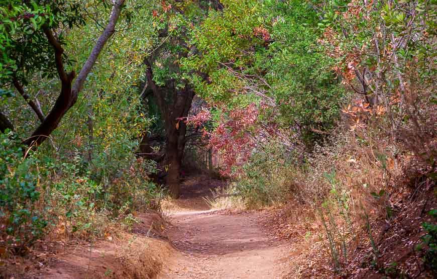 The easy walking trail to Escondido Falls