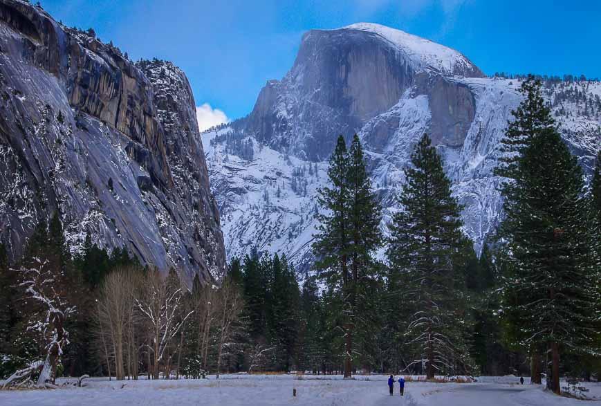 Half Dome dominates the skyline in Yosemite Valley