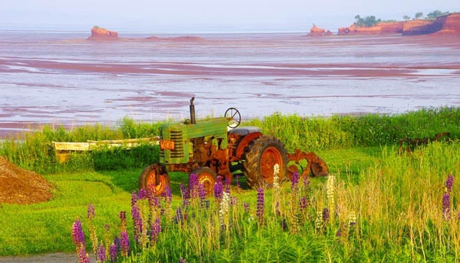 """""""Old tractor looks beautiful in the evening light"""""""