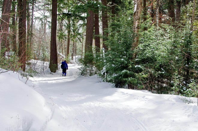 """Superb skiing on the Pinetree Loop - called the premiere ski trail in southern Ontario"""