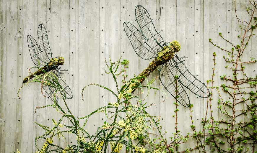 A bit of whimsy with these mossy dragonflies on a concrete wall