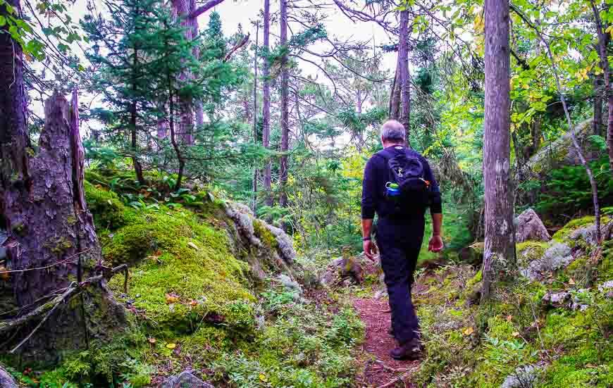 Hiking the Nokomis trail through the woods with peek a boo views