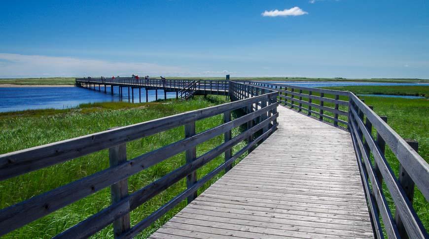 The boardwalk to Kelly's Beach