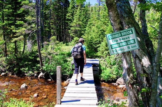 """Heading for Corner Brook Gorge"""