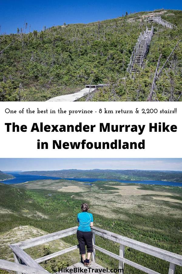 The Alexander Murray hike in Newfoundland - one of the best in the province - but beware - 2200 stairs to the top!