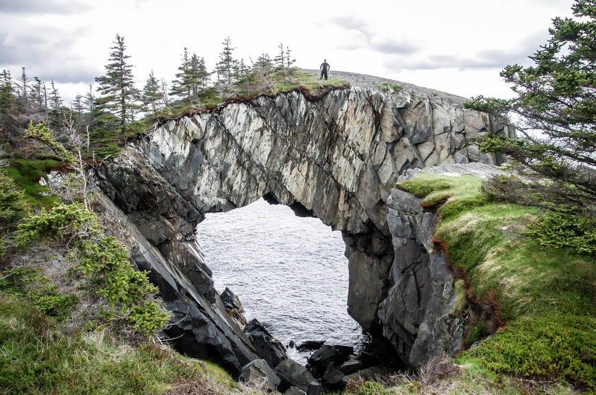 A Hike on the Spurwink Island Path, East Coast Trail, Newfoundland