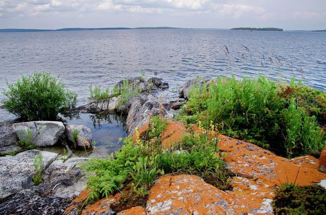 """Orange lichen covered rocks at the edge of Lac La Ronge"""