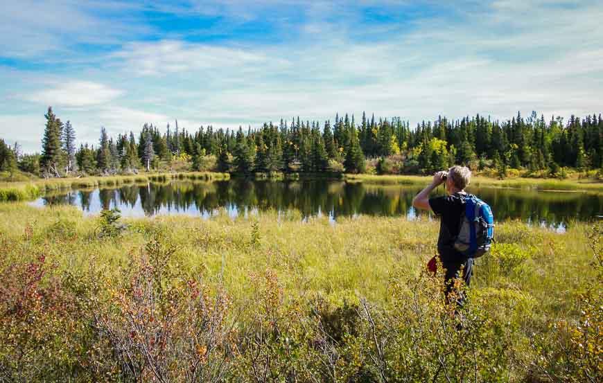 John looking for birds on the Auriol Trail