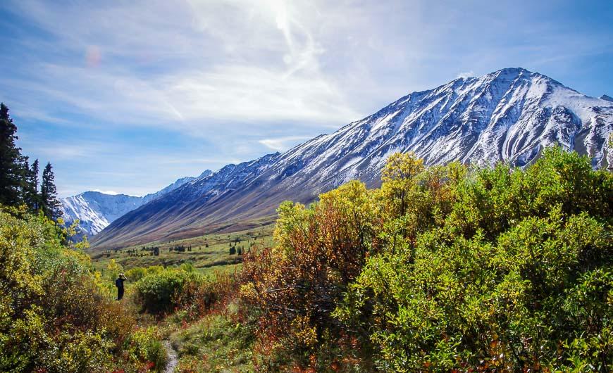 Big valley views near the high point on the Auriol Trail