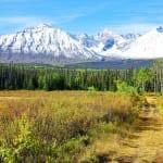 """The start of the Auriol Trail in Kluane National Park"""