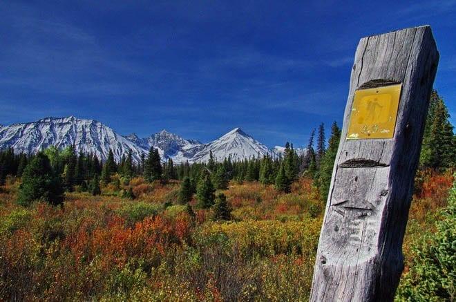 """The 3.2 km mark on the Auriol Trail in Kluane NP"""