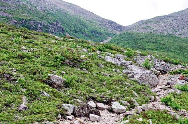 """""""Gros Morne Mountain climb"""""""
