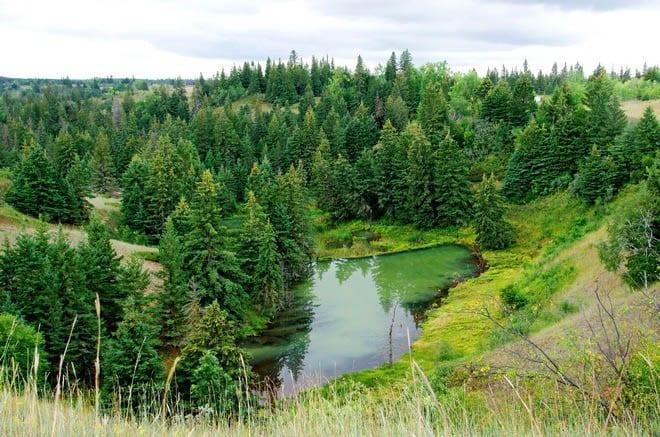 The Devil's Punch Bowl, Spruce Woods Provincial Park