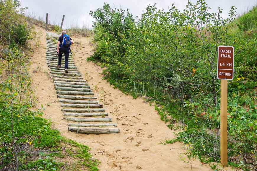 Heading off to explore one of the spur trails in Spruce Woods Provincial Park