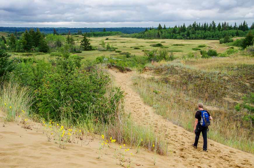 The Spirit Sands Hike in Spruce Woods Provincial Park - Hike