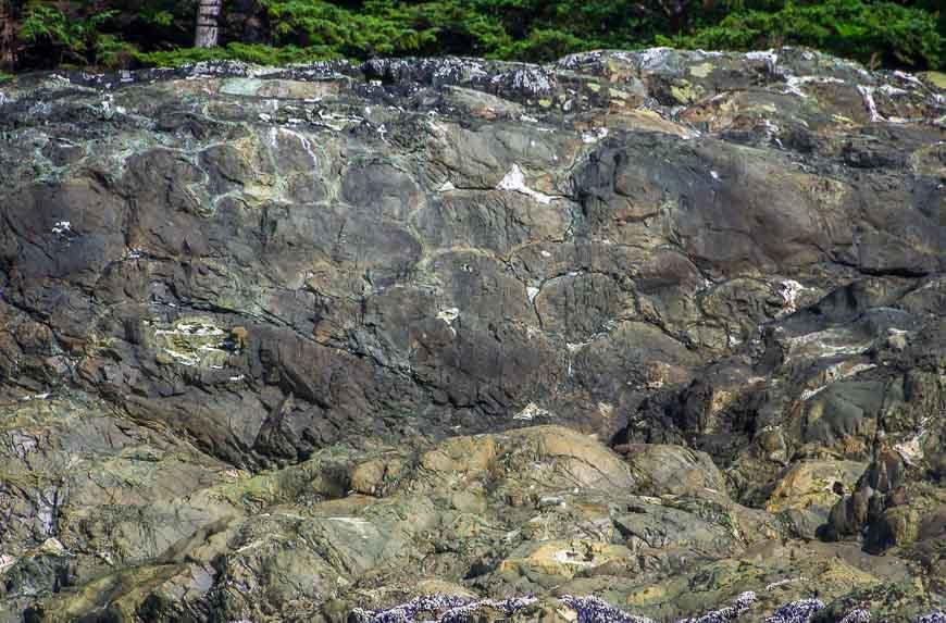 We kayak by pillow basalt