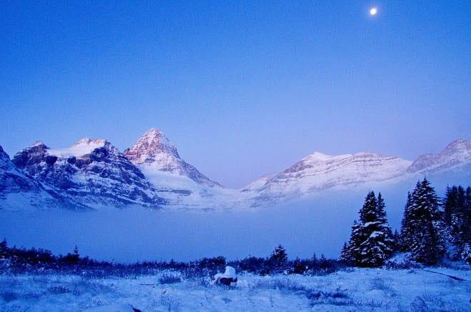 Mt. Assiniboine at dawn