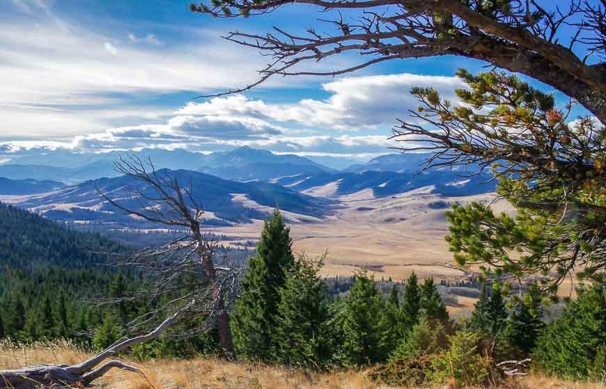 Hiking the Whaleback Ridge near the Cowboy Trail