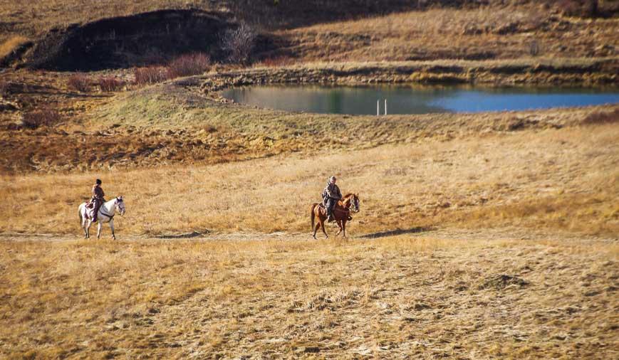 Horseback riders seen on the Whaleback Ridge hike