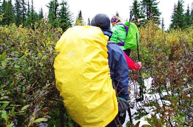 Making or way through dense vegetation