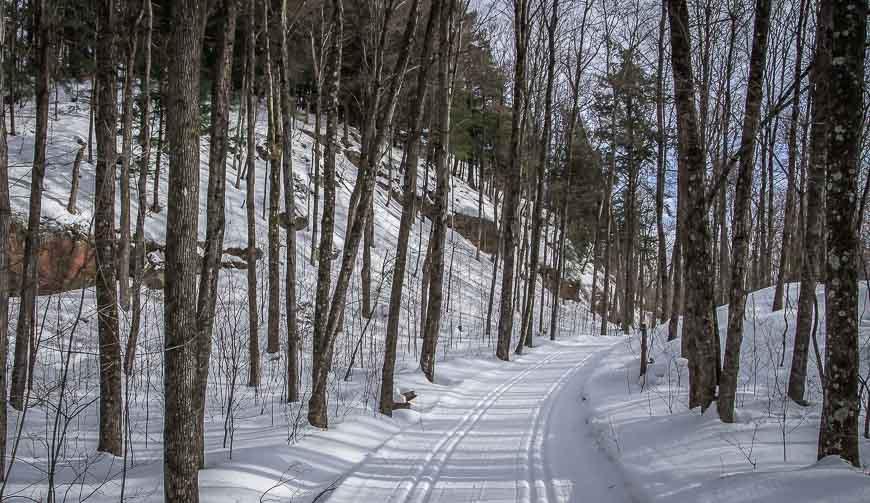 Beautiful trails - empty on weekdays
