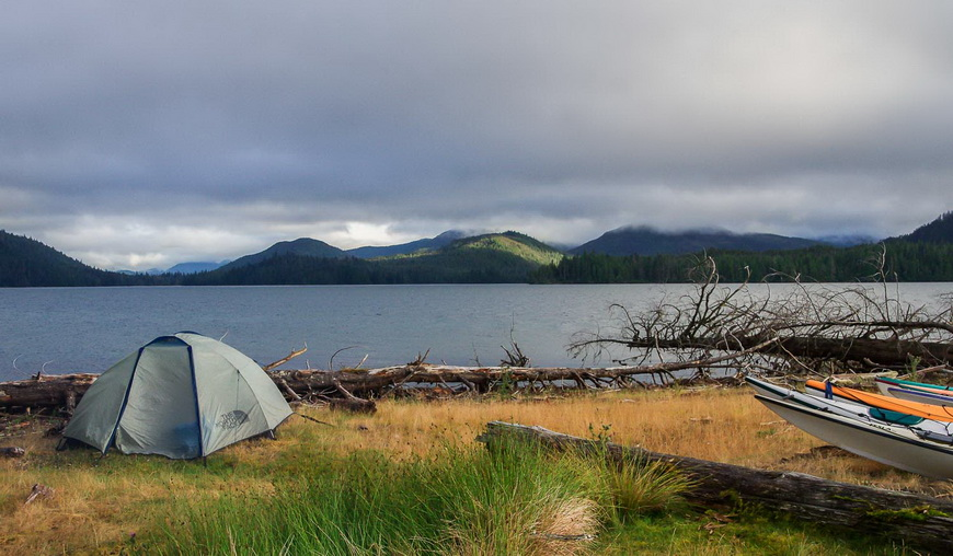 Gwaii Haanas National Park delighted with the sight of a whale swimming in front of this campsite