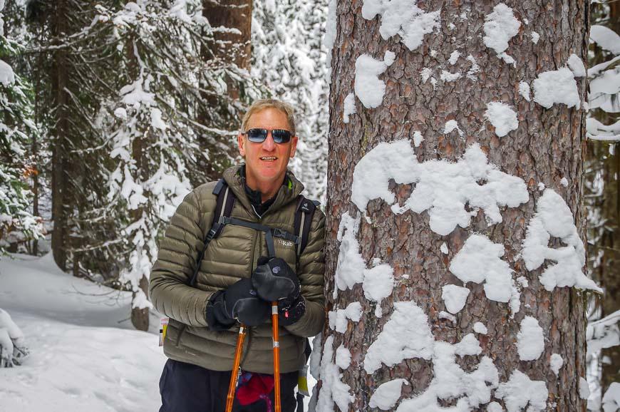 Massive trees along the trail