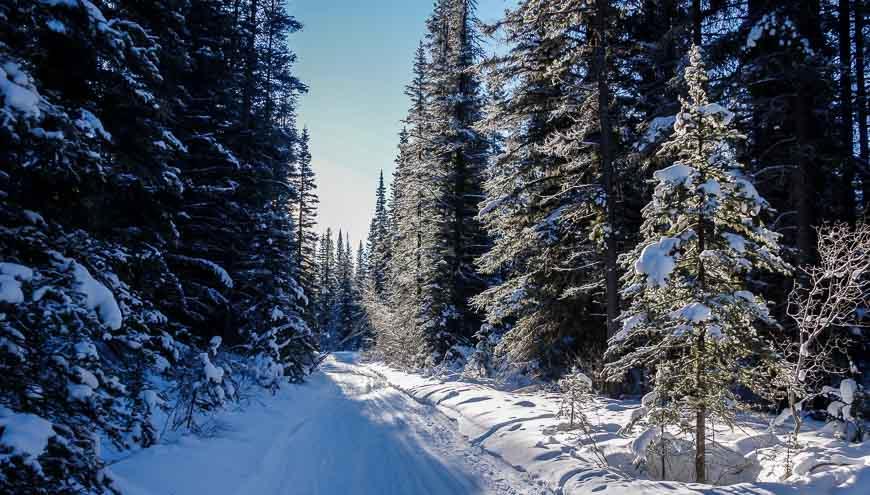 It's a pretty ski in primarily in the trees