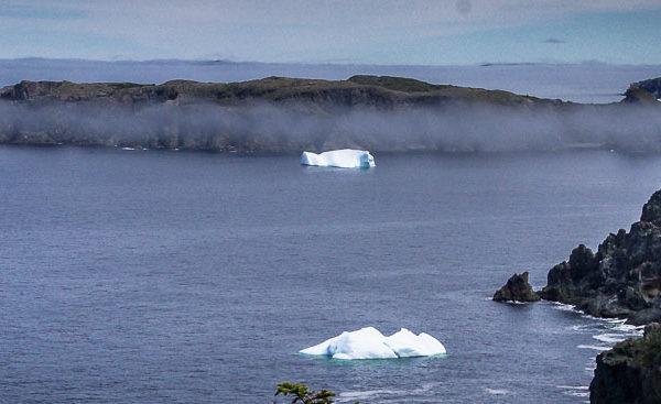 Twillingate, Newfoundland icebergs