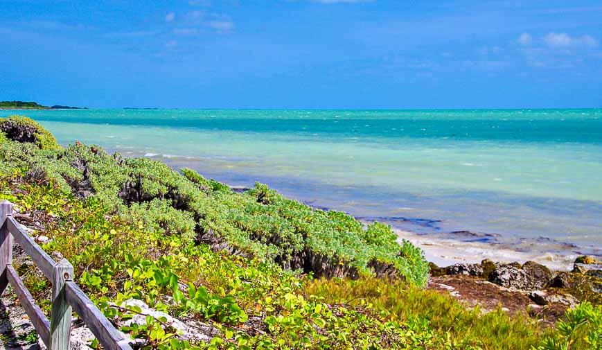 The island is made of Key Largo limestone