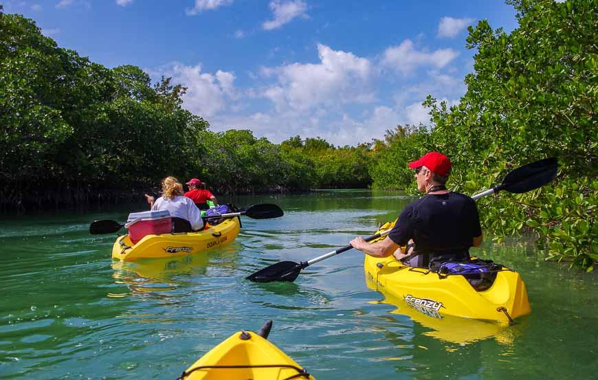 Kayaking quiet channels near Key West