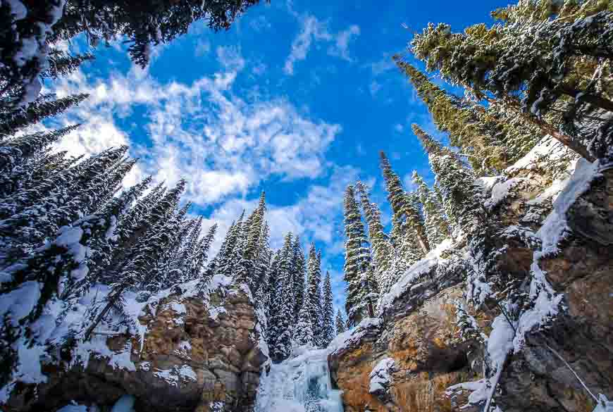 Snowshoeing in Jasper and looking up out of Watchtower Canyon