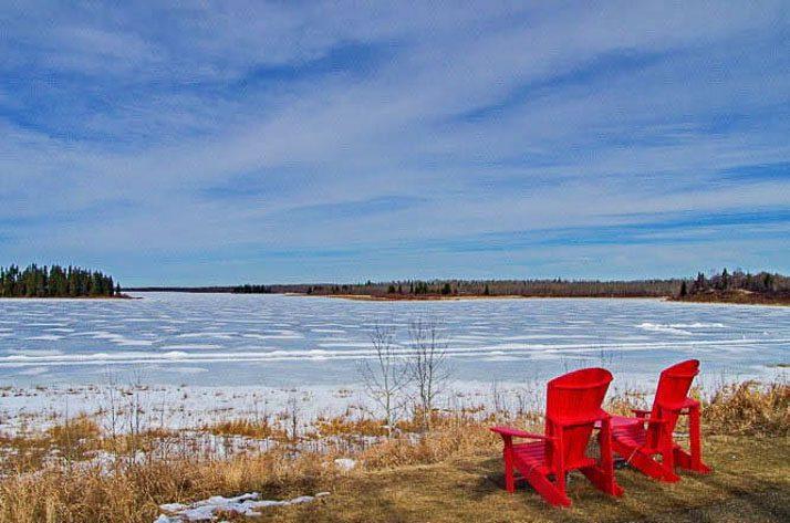Waiting for summer in Elk Island National Park