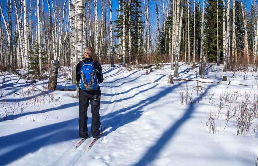 Near Rocky Mountain House cross country ski at Crimson Lake Provincial Park