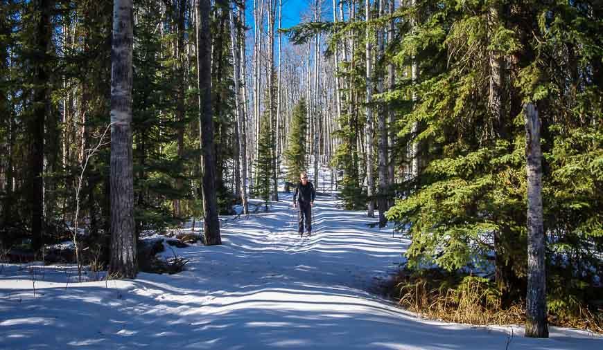 Near Rocky Mountain House enjoy delightful skiing around Crimson Lake