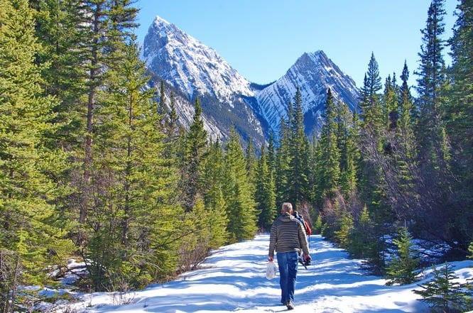 The hike to Siffleur Falls in Alberta